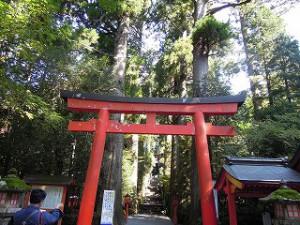箱根の神社